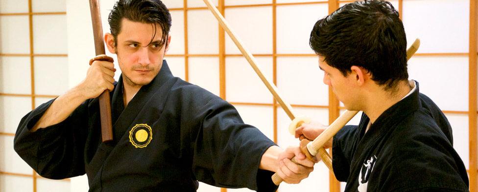 Nito Ryu Kenjutsu