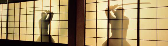 Mugai Ryu Seminar
